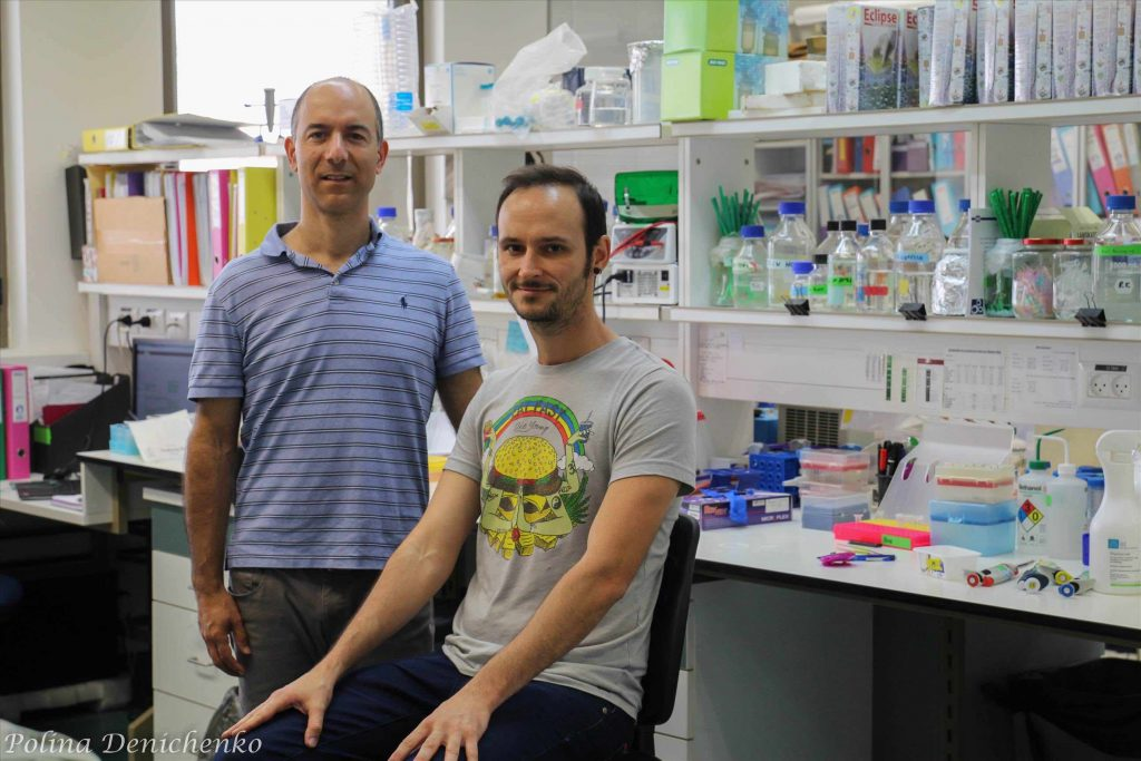 Hebrew University researchers discover promising treatment for